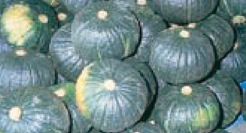 収穫イメージ