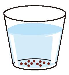 種を水につけるイメージ