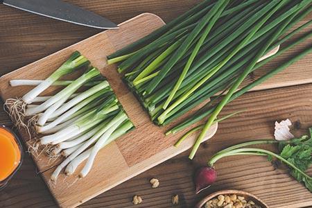 ネギ料理イメージ