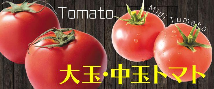 大玉中玉トマト