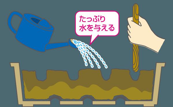 水を与える