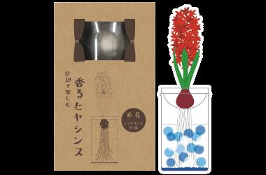 香るヒヤシンス商品パッケージ