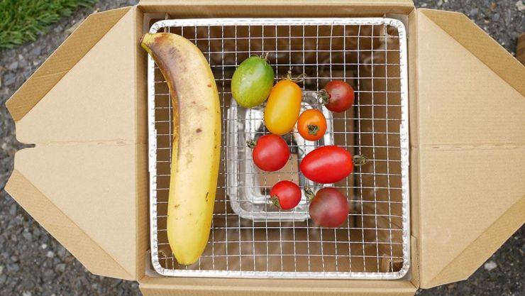 トマトとバナナの燻製後