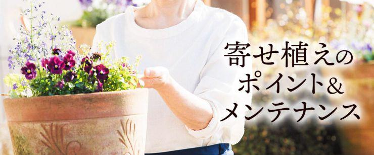 寄せ植え豆知識