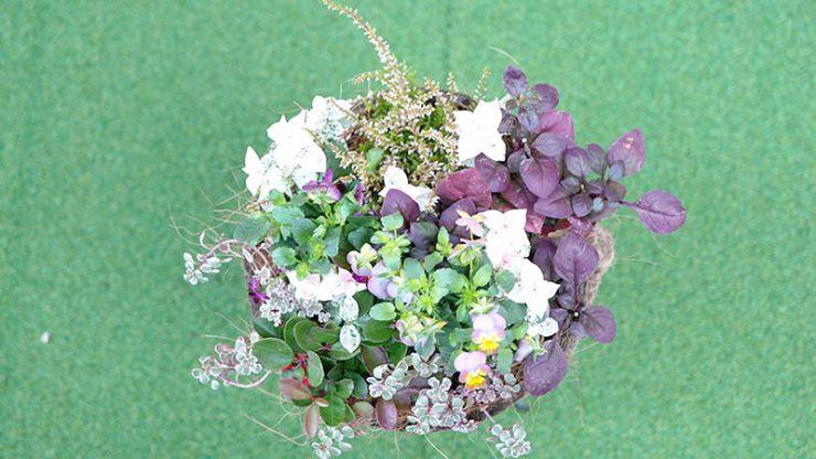 花の色は3色以内に抑える