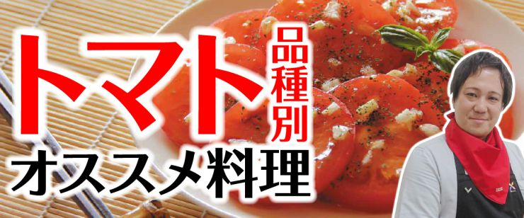 トマト品種別オススメ料理