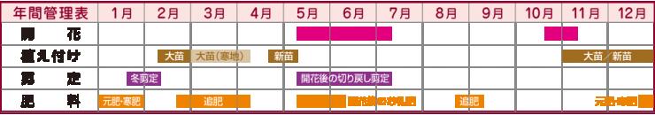 年間管理表
