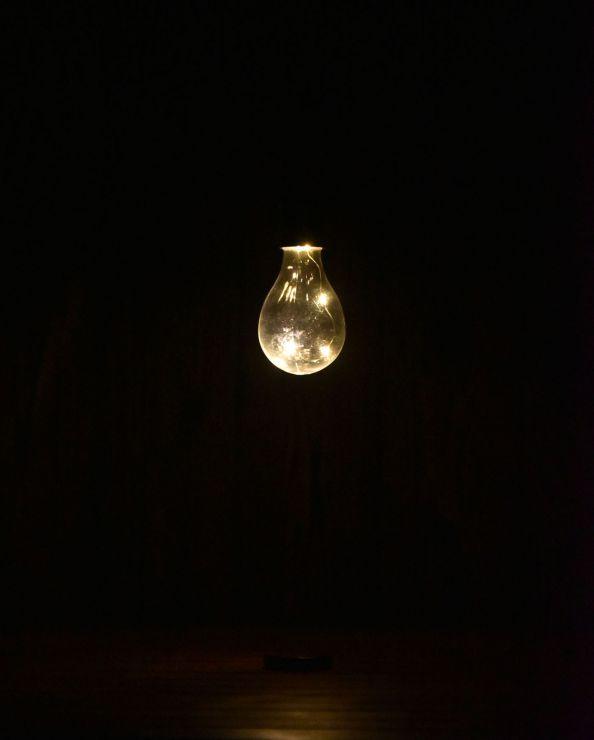 ソーラー電球ライト SL-D75